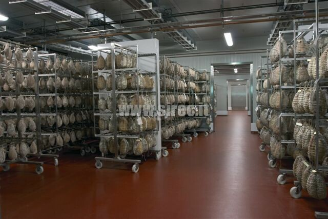Epoxy resin floor for seasoning meats